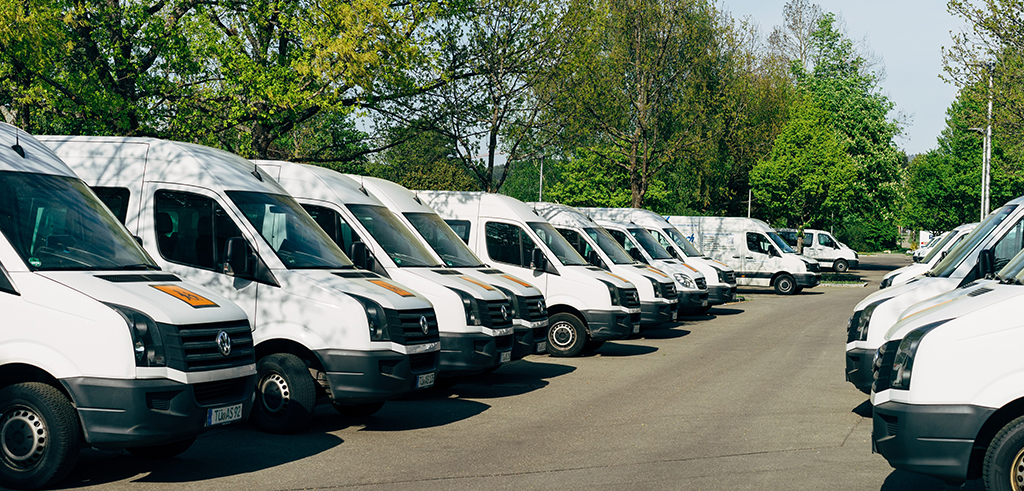 several white vans in a row outdoors in front of green-leafed trees